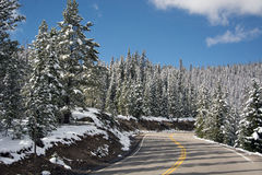 Trail Ridge Road Royalty Free Stock Photography