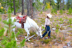 Trail Riding Royalty Free Stock Photo
