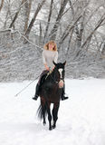 Trail riding in winter park Royalty Free Stock Images