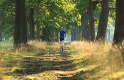 Trail run lane stock photography
