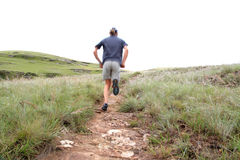 Trail runner Stock Images
