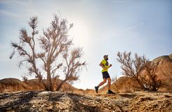 Trail running adventure royalty free stock photography