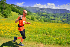 Trail running athlete Royalty Free Stock Image
