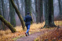 Trail running in autumn park. Young man jogging. Trail running in autumn park. Back view of young man jogging in fall misty forest Royalty Free Stock Photography
