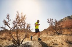 Trail running in the desert royalty free stock images