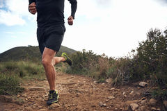 Trail running fitness royalty free stock photography