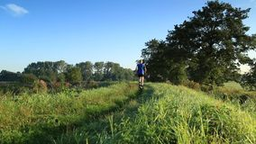 Trail running! stock footage