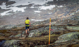 Trail running. In the mountain of Sweden Royalty Free Stock Images