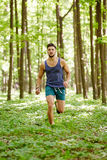 Trail running Royalty Free Stock Photos