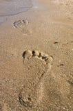 Trail on the sand beach Stock Photo