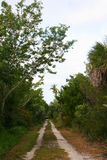 Trail, Sanibel, Florida Stock Photography