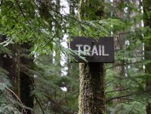 Trail Sign. Trail hiking sign Campbell River Stock Image