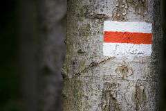 Trail sign. Red-White trail sign on the tree Stock Images