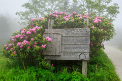 Trail Sign Roan Mountain Tennessee North Carolina Fog Royalty Free Stock Image