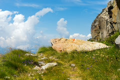 Trail Sign on a Rock - Italian Alps. Mountain footpath with a red and white trail Sign on a Rock. Hiking trail sign symbol in Italy alps Royalty Free Stock Photo