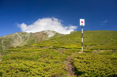 Trail signpost Royalty Free Stock Image
