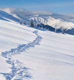 Trail in the snow-covered  mountains Stock Images