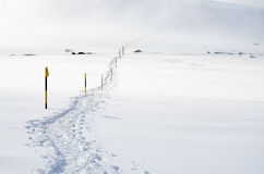 The trail in the snow Stock Photography