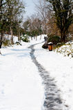 Trail in the snow Royalty Free Stock Photography
