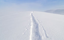 Trail in the snow in the mountains Royalty Free Stock Images