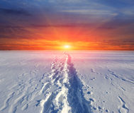 Trail on snow on sunset background Stock Photos