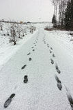 Trail in snow Royalty Free Stock Photography
