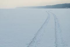 Trail snowy lake Stock Photography