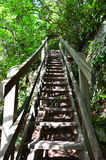 Trail stairs Royalty Free Stock Images