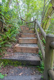 Trail Steps 5 Royalty Free Stock Image