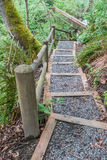 Trail Steps 4 Royalty Free Stock Image