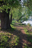 Trail stretching along the shore of the lake. Early Sunny spring morning. Stock Photography