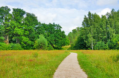 Trail in the summer the park royalty free stock photos