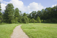 Trail in the summer the park royalty free stock images