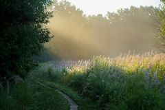 Trail at sunrise in summer with rays of light Stock Photo