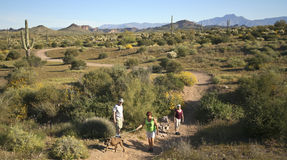 A Trail into the Superstition Mountain Wilderness Stock Photo