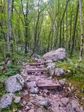 Trail to Boka waterfall. Forest trail to Boka waterfall, Slovenia Stock Photography