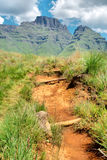 Trail to Cathkin Peak Stock Image