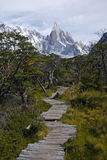 Trail to Cerro Torre Stock Images