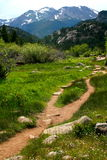 Trail to Cub Lake. Moraine Park, Rocky Mountain National Park, Colorado Royalty Free Stock Photos