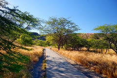 A trail to Diamond Head crater viewpoint on Oahu Royalty Free Stock Photo
