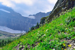 Trail to Grinnell Glacier in Glacier National Park Stock Photos