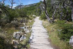 Trail to Cerro Torre at the Los Glaciares National Park, Argentina. Trail to Laguna Toree and Cerro Torre at the Los Glaciares National Park, Argentina. The park stock photography