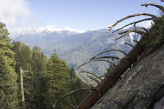 Trail to Moro Rock in Sequoia National Park Royalty Free Stock Images
