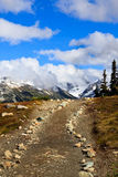 Trail to mountain. Small trail to go to the canadian rockies Royalty Free Stock Photo