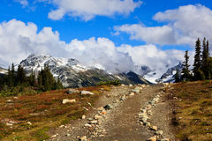 Trail to mountain. Small trail to go to the canadian rockies Royalty Free Stock Image