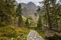 Trail to the mountain. Photo was taken in High Tatras on Polish side near Morske oko lake ,trail is leading to the peak of the mountain,Poland stock photo