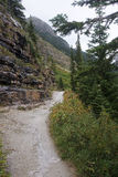 The trail to the Plain of Six Glaciers Tea House from Lake Louis stock images