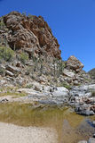 Trail to Tanque Verde Falls Stock Photos