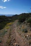 Trail to Wasson Peak Royalty Free Stock Image