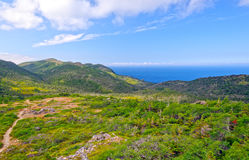 Trail to a Wilderness Coast Stock Photography